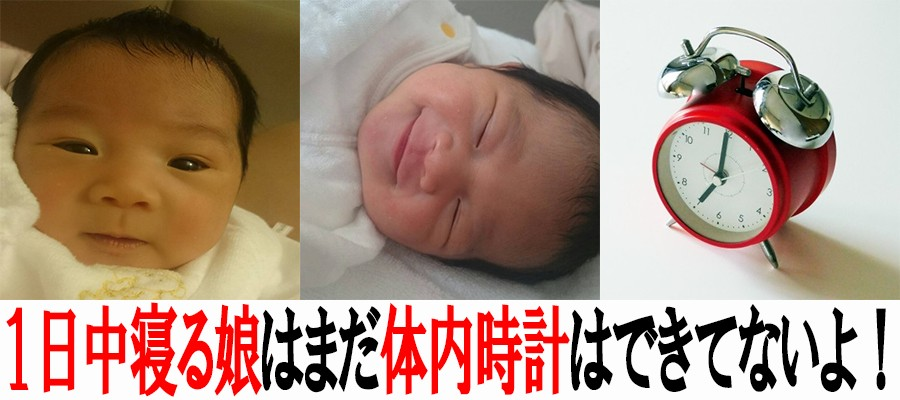 新生児と体内時計