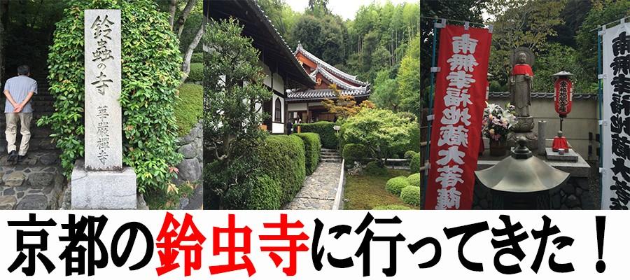 鈴虫寺に行ってきた