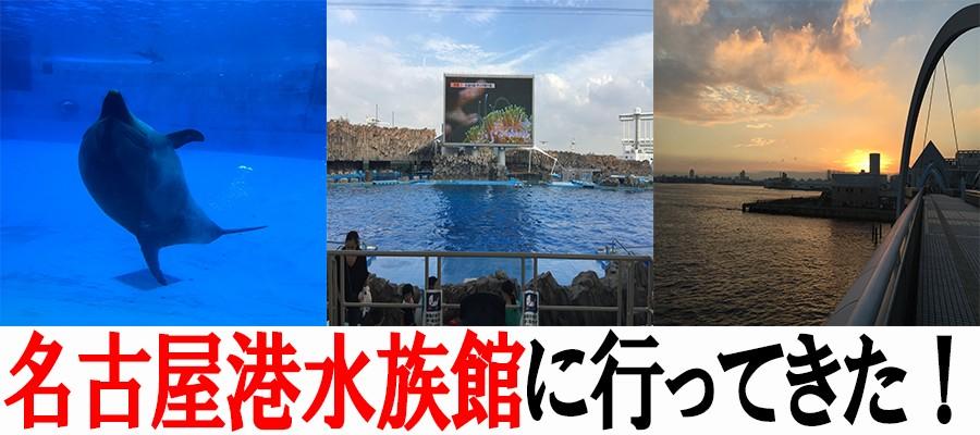 名古屋港水族館へ行ってきた!イルカショーも見れて赤ちゃん連れの家族で楽しめるぞ