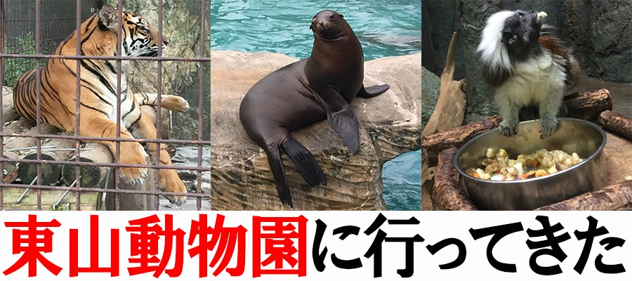 東山動物園に行ってきた