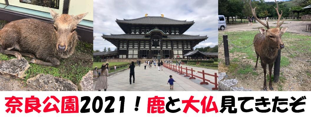 奈良公園2021!鹿せんべいと東大寺を楽しんできたぞ